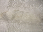 Natural White Fox tail with ballchain